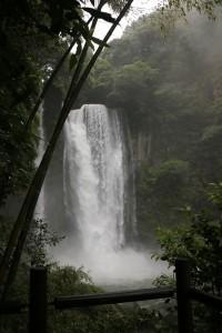 150615kagoshima180